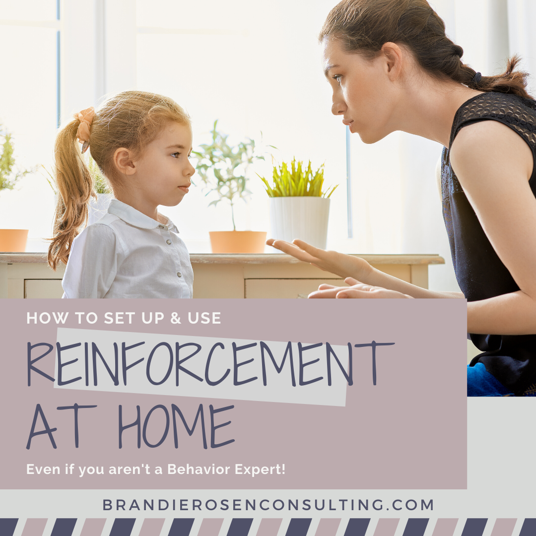 How to Set Up and Use Reinforcement at Home (Even If You Aren't a Behavior Expert!)